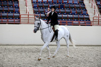Low Adult Hunter Under Saddle and Ribbons